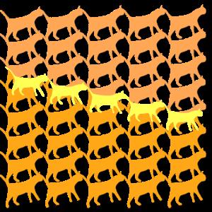 Sehr viele Kätzchen in einem Muster Trendfarben