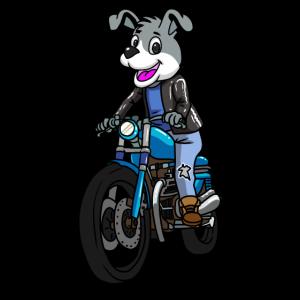 Kleiner suesser Hund auf Motorrad