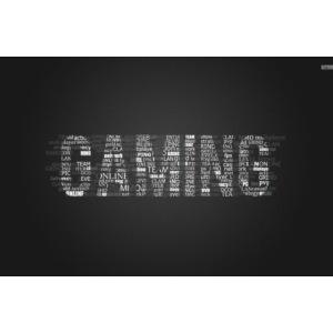 gaming 28646 1680x1050