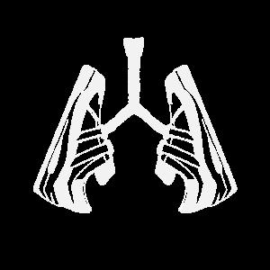 Lunge Lungenflügel Atmen Wichtig Schuhe Fan Frauen