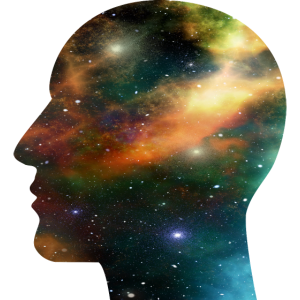 Universum Schädel