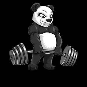 Panda Kreuzheben Workout Bodybuilder Geschenk