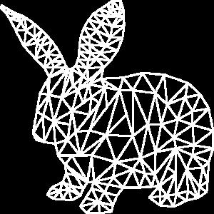 Hase Polygon - Grafik