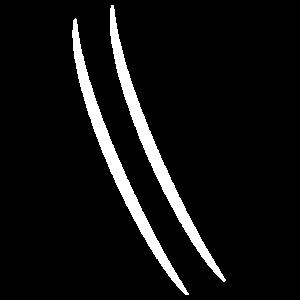 2 linien
