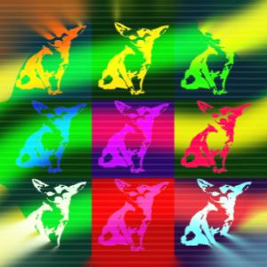 chihuahua hund poster als geschenkidee