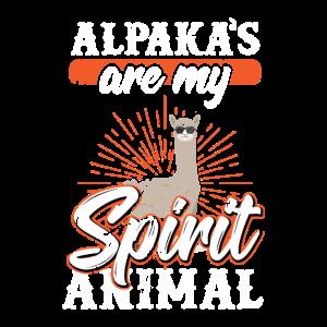 Alpaka ist mein lieblings tier
