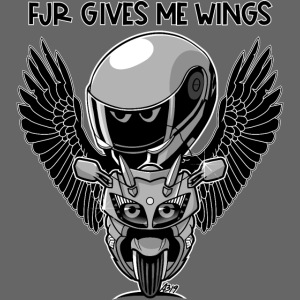 FJR gives me wings