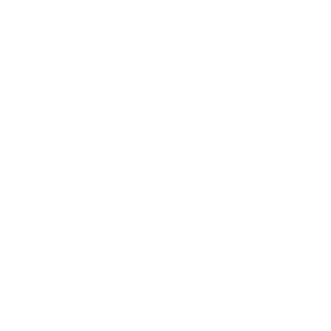 Vinyl Musik