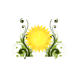 Forest Vibes