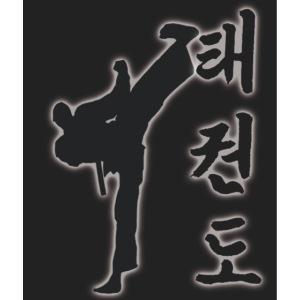 Pande Tollyo Chagi Schriftzeichen black