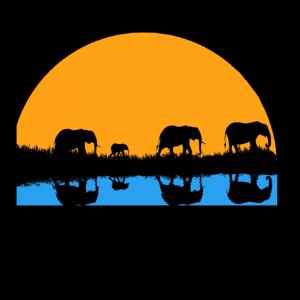 Elefanten Herde im Sonnenuntergang Geschenk