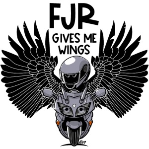FJR (silverstorm) gives me wings