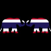 Thai Elefanten