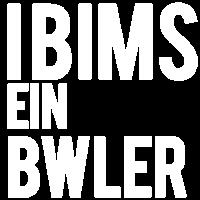 Bwler BWL Betriebswirtschaft BWL Studenten