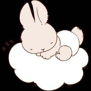 Baby-Häschen schläft auf Wolke
