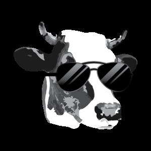 Kuh mit Sonnenbrille