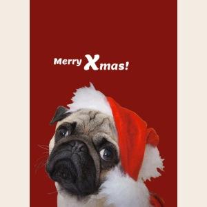 weihnachtsmopsportrait3