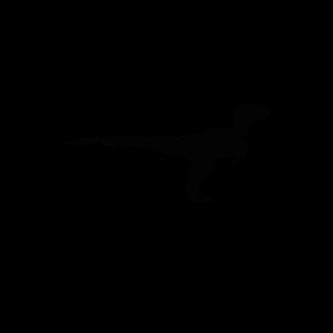 Velociraptor Physic Spruch Geschenk