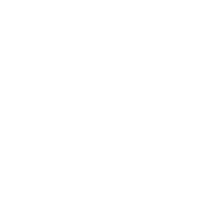 Physiker evolution Physik