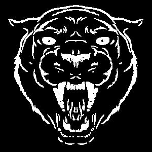 Schwarzer Panther Jaguar Leopard Katze Kopf