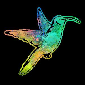 Kolibri Vogel bunt
