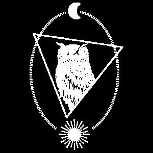 Astro Owl Luna Sun Vintage Moon Nature T-Shirt