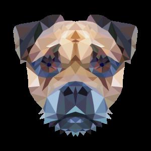 Mops Polygon Hundekopf