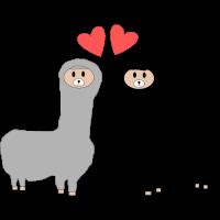 verliebte Lamas
