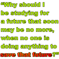 #FridaysForFuture Spruch Save Future Grün und Rot