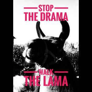 Lama-Drama