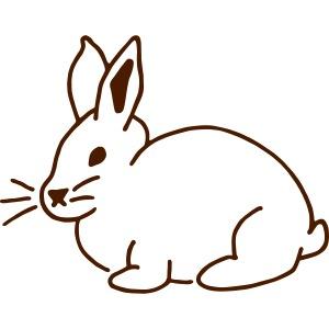 Hase, rabbit, Ostern, süß