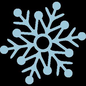 schneeflocke weihnachtsstern