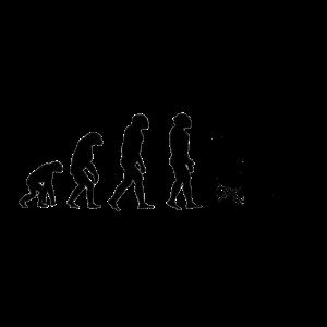 Evolution Sitzen Abhaengen Urlauber Strand Palme