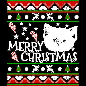Niedliche persische Kätzchen-Weihnachtskatzen-Süßigkeit