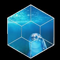 Sommer Delphin im Wasser Saeugetier Geschenk