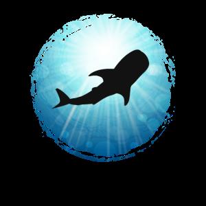 XASTY Walhai Schatten Tauchen Freitauchen Taucher