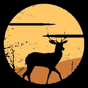 Deer. Reh. Hirsch. Jagd. Jäger. Wild