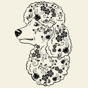 Flower Poodle IIIIV