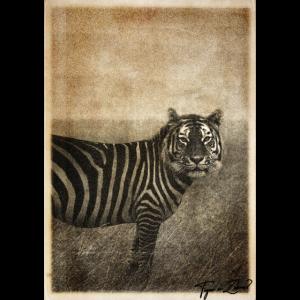 Surrealer Tiger