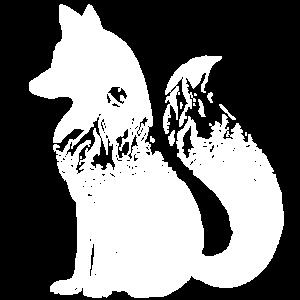 Fuchs, Füchse
