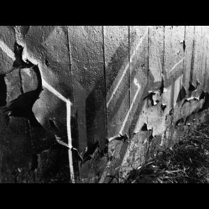 Schwarzweiss Graffiti Foto