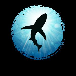 XASTY Hai Ozean Haie Tauchen Freitauchen Apnoe