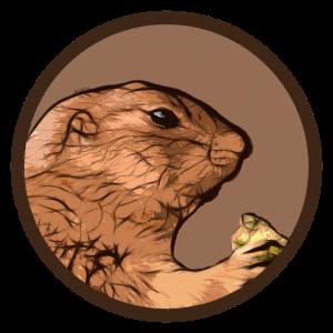 Murmeltier - Tierliebe