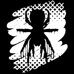 Spider Spinne