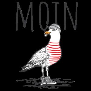 Moin Möwe Hafen Norddeutschland Plattdeutsch Küste