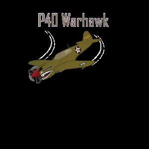 Warhawk P40 Airshow Aviation Modellbau Geschenk
