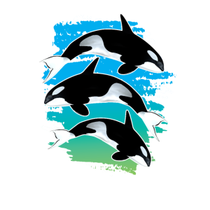 Orca Delfin Wal Aquarium Fisch Geschenk