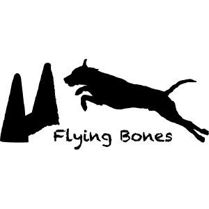 flying bones shirtschwarz 2