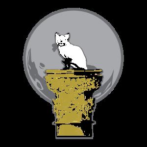 Katze auf Pedal-Geschenk-T-Shirt