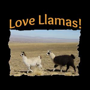Liebe Lamas beste Freunde